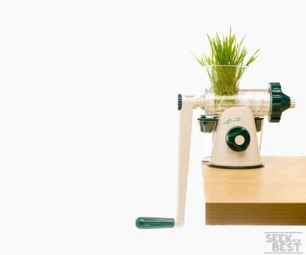 4. LEXEN JUICER GP27 - Best Cheap Wheatgrass Juicer