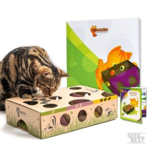 11. Cat Amazing Interactive Treat Maze