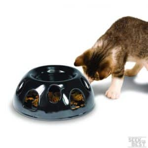 5. Pioneer Pet Ceramic Cat Feeder